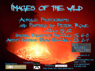 """Images of the Wild"" Exhibition"